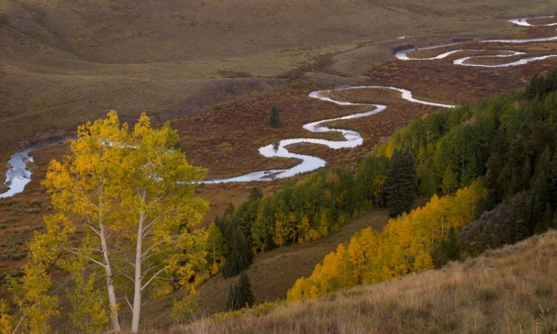 East river colorado fly fishing camping boating alltrips for Crested butte fishing