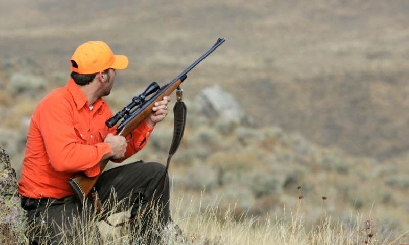 Crested Butte Colorado Hunting